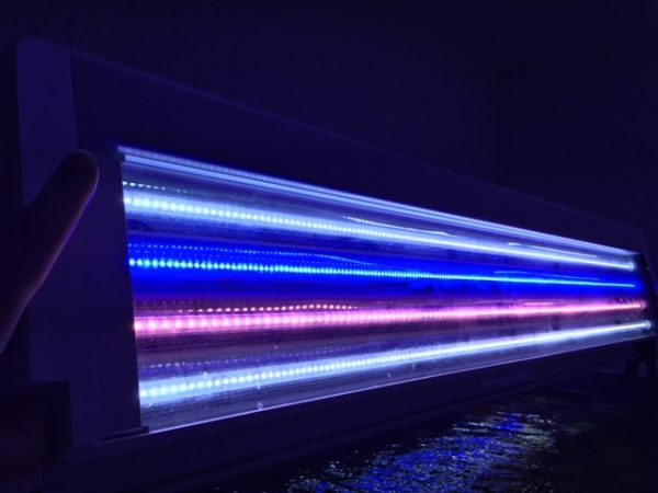 Tube T5 à led de 1200 mm